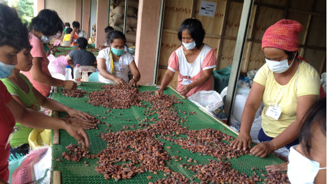 CacaoWorkers-01-24-2014